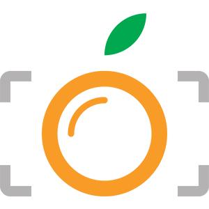 Photography Logo Design By Pixelvisualize