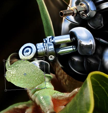 How to create a robotic frog Photoshop tutorial