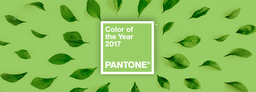 20 green logos inspired by pantone 39 s 2017 color of the year greenery. Black Bedroom Furniture Sets. Home Design Ideas